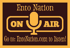 Ento nation
