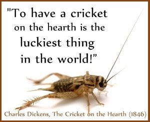 Cricket-lucky-Dickens