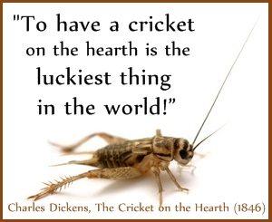 Cricket-lucky-Dickens